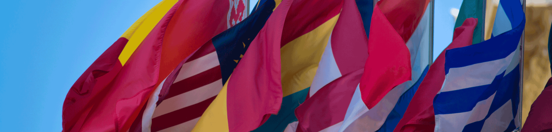 global flags 2019