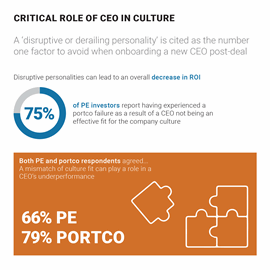 ap fifth annual pe leadership survey report infographic 2020 6