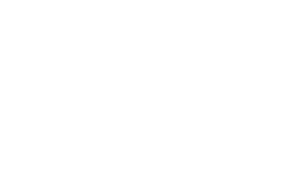 youth inc    logo  white    with tagline